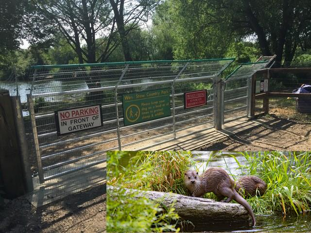 Otter proof gate innovation!